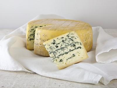 Friesisch Blue Bio
